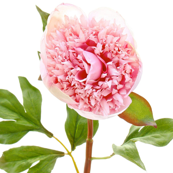 luxury artificial fake silk flowers white pink open peony lifelike realistic faux flowers buy online from Amaranthine Blooms Hong Kong UK