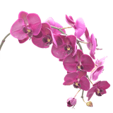 luxury artificial fake silk flowers purple orchid stem lifelike realistic faux flowers buy online from Amaranthine Blooms Hong Kong UK