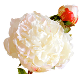 luxury artificial fake silk flowers white open peony lifelike realistic faux flowers buy online from Amaranthine Blooms Hong Kong UK