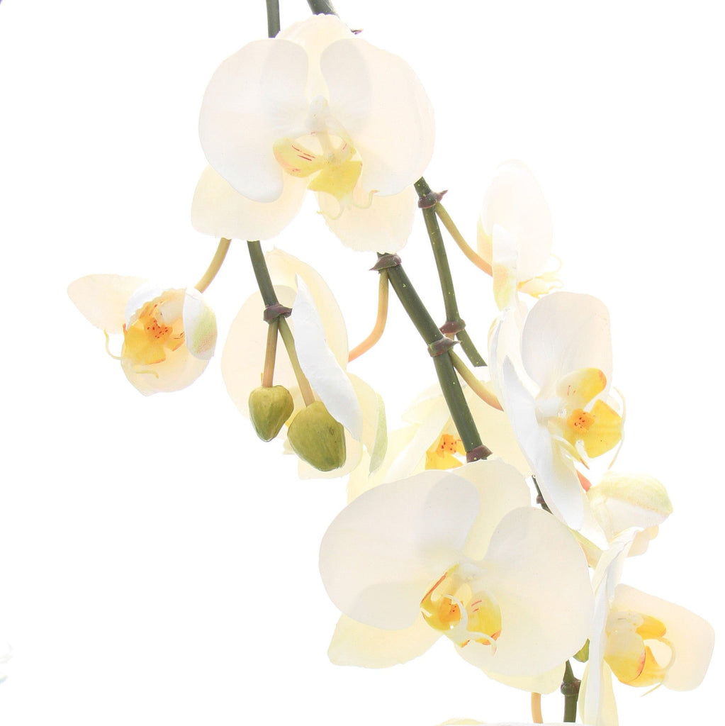 luxury artificial fake silk flowers white phalaenopsis stem lifelike realistic faux flowers buy online from Amaranthine Blooms Hong Kong UK