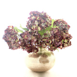 purple dried hydrangea
