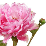pink peony luxury realistic lifelike artificial silk flower from Amaranthine Blooms in UK, Hong Kong, Australia