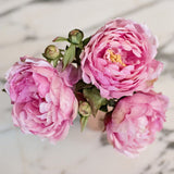 Realistic and lifelike artificial fake silk flower highest quality pink peony luxury faux flowers from Amaranthine Blooms