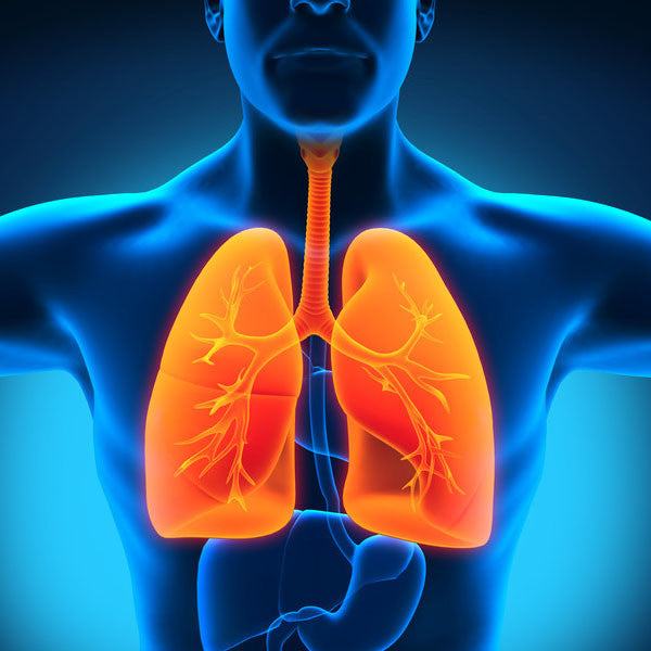 Top 5 Essential Medical Items Needed for Respiratory Conditions