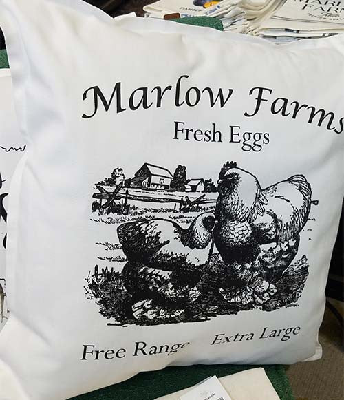 Marlow Farms Fresh Eggs Cochin Pillow