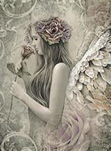 Angel Cards by Jessica Galbreth
