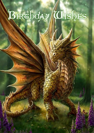 rAN16 - Friendly Dragon Card Anne Stokes Birthday Cards at Enchanted Jewelry & Gifts