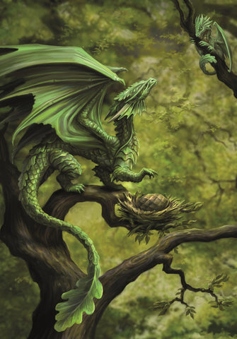 (Product Code: rAN75) Forest Dragon Card, Anne Stokes Age of Dragons Cards - EnchantedJewelry