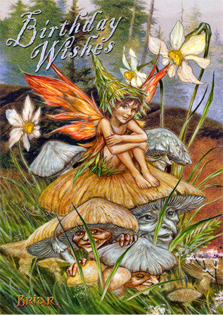 (Product Code: rBM49) Mushroom Fairy, Briar Birthday Cards - EnchantedJewelry