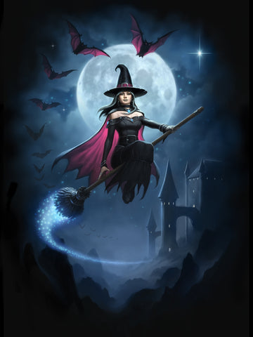 rJR01-Witch Flight Card (Cards - James Ryman) at Enchanted Jewelry & Gifts