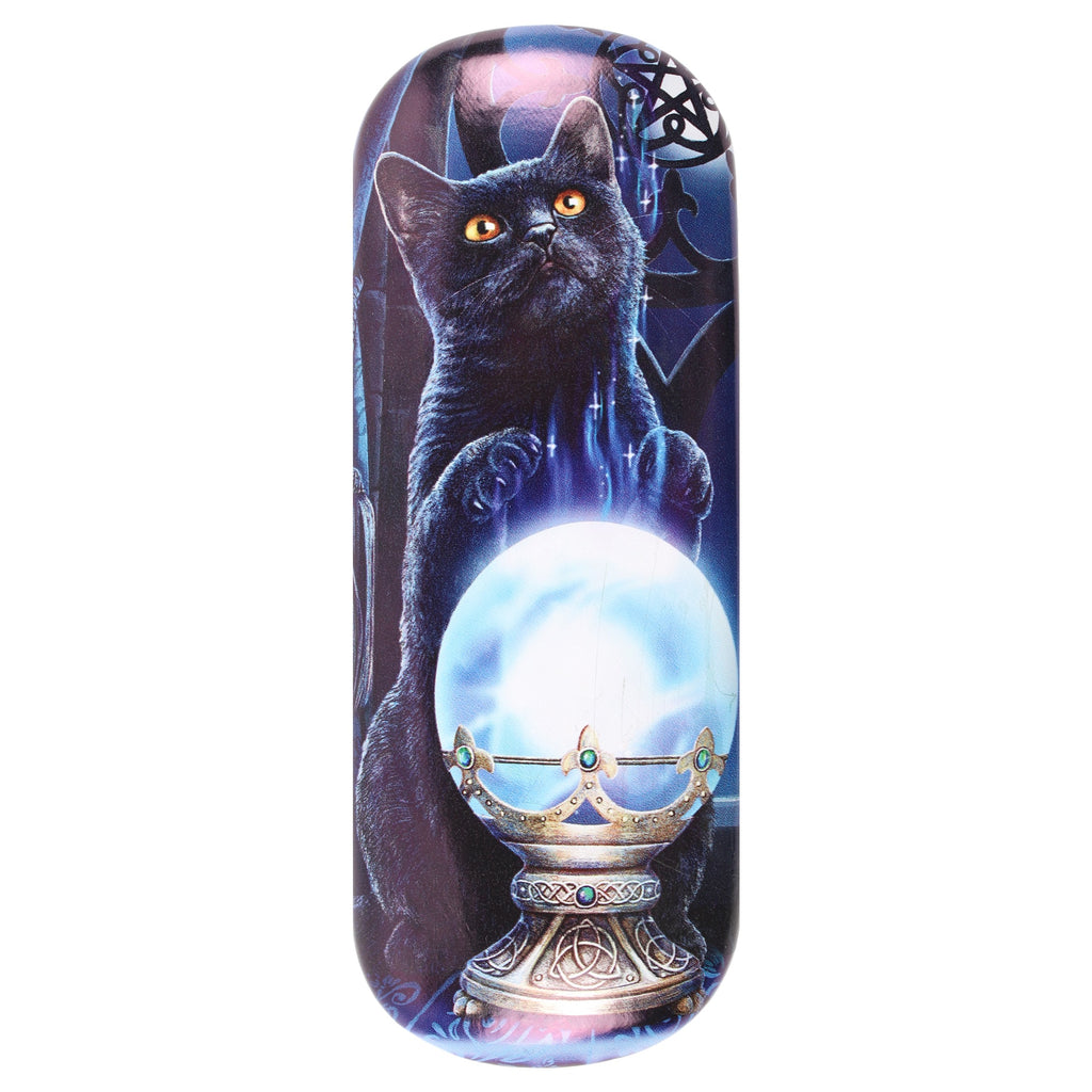 LP308G-Witches Apprentice (Black Cat) Eyeglass Case by Lisa Parker Eyeglass Cases at Enchanted Jewelry & Gifts