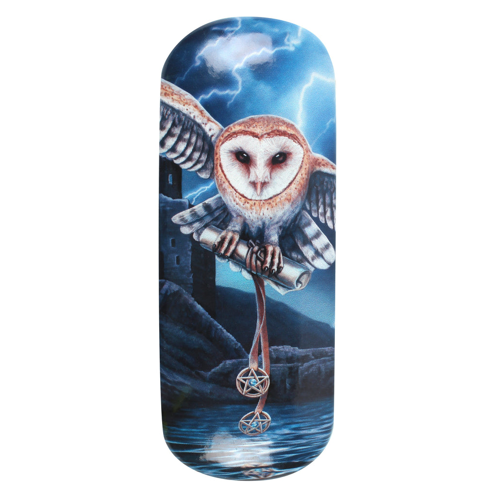 LP038G-Heart of the Storm (Owl) Eyeglass Case by Lisa Parker Eyeglass Cases at Enchanted Jewelry & Gifts