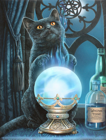 WP070LP - Witches Apprentice Cat Canvas Print by Lisa Parker (Canvas Art Prints) at Enchanted Jewelry & Gifts
