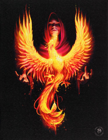Phoenix Rising Canvas Print by Anne Stokes