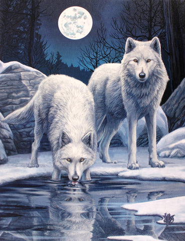 WP285LP-Winter Warriors White Wolves Canvas Art Print by Lisa Parker Canvas Art Prints at Enchanted Jewelry & Gifts