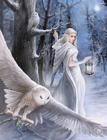WP104AS-Midnight Messenger Canvas Art Print by Anne Stokes Canvas Art Prints at Enchanted Jewelry & Gifts