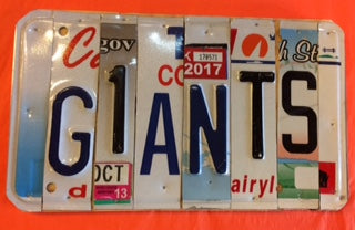 Upcycled License Plate Signs