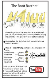 Root Ratchet (5 Pack)
