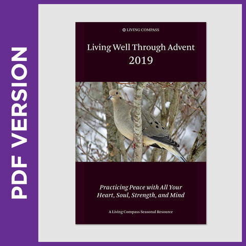 Living Well Through Advent 2019  (8.5x11 PDF FILE)