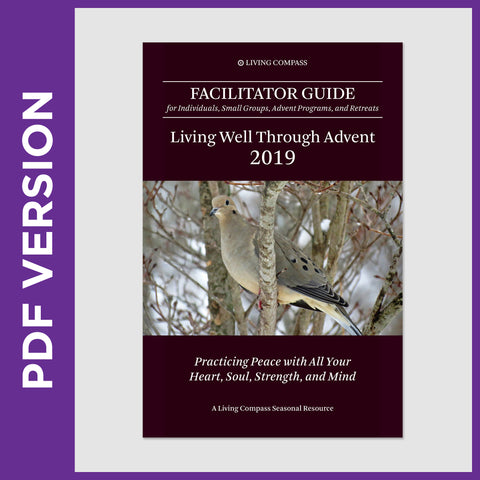 Advent 2019 Facilitator Guide (8.5x11 PDF File)