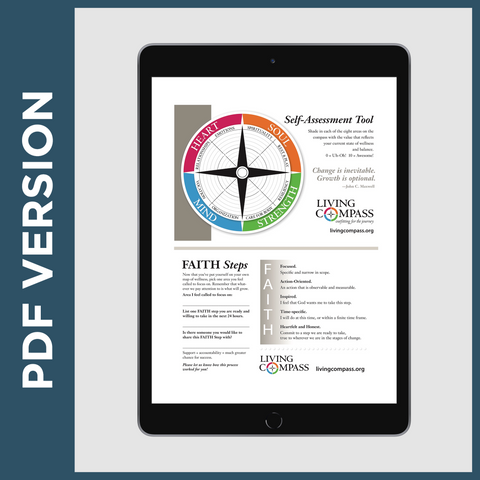 Flash Self-Assessment & Compass Tool (PDF FILE)