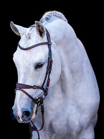 PSOS HvE Bridle By PS Of Sweden