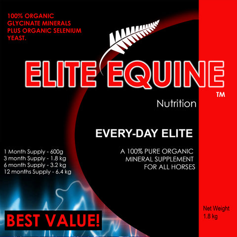 Elite Equine Everyday Elite