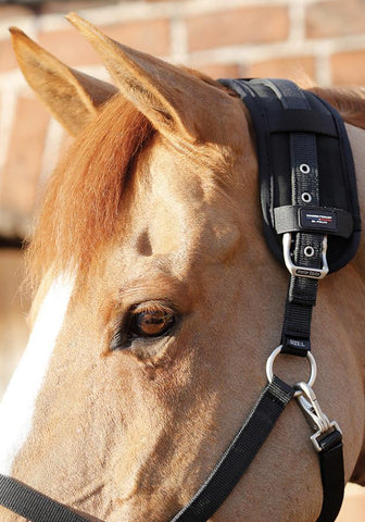 PEI Premier Equine Magni-Teque Magnetic Poll Band