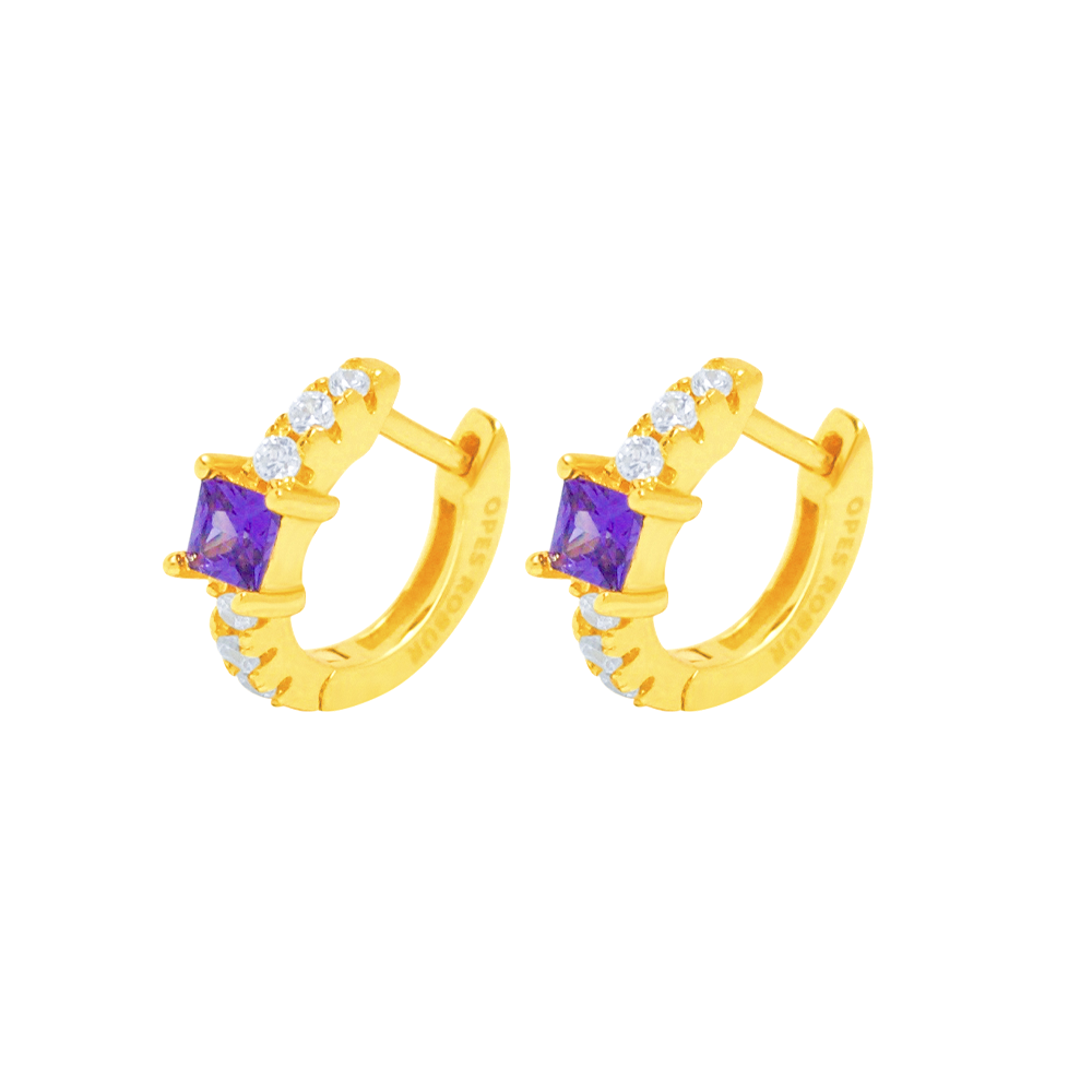 PURPLE PRINCESS HOOPS