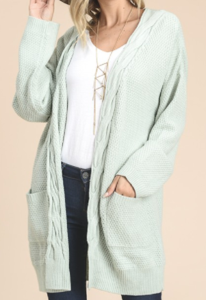 """Logan"" Braided Cardigan in Sage or Pink (S-L)"