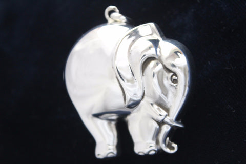 The Rollie Pollie Elephant - Cazenovia Abroad