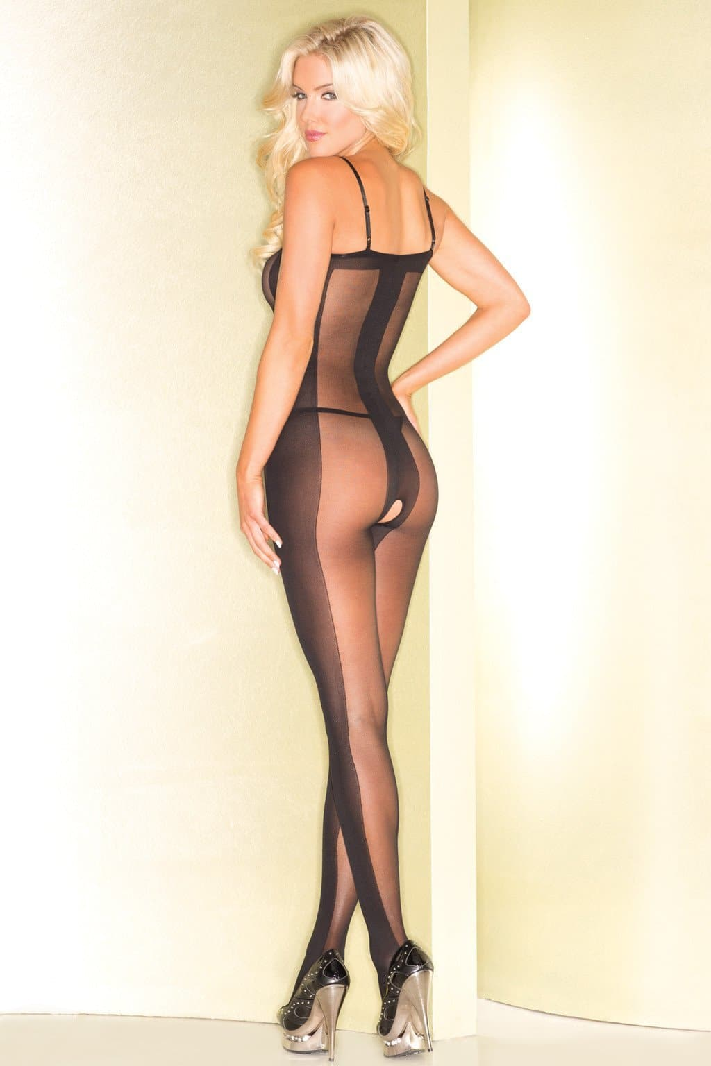 Be Wicked BWB81 Sheer Bodystocking With Opaque Center