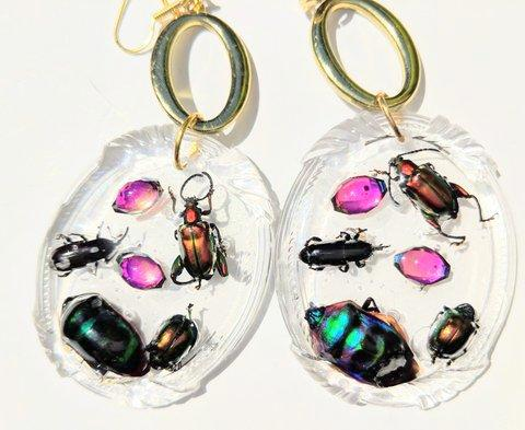 Sugar Gay Isber Bug Earrings Contemporary Jewelry