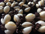 Cowrie Shells with Seeds Necklace Handcrafted Costume Jewelry