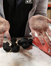 Removing Charcoal From your hands