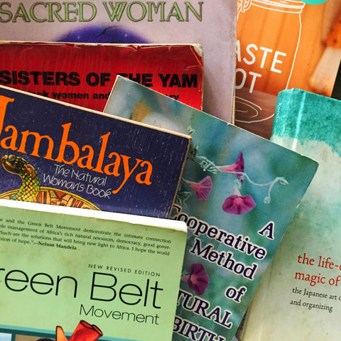 eco- conscious, black feminist, thought theory, wangari maathai, the greenbelt movement, queen afua, jambalaya luisah teish, sisters of the yam, bell hooks