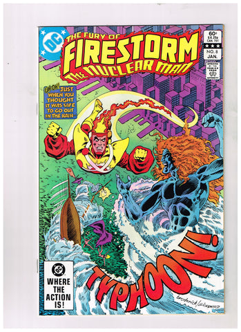 Fury Of Firestorm #08