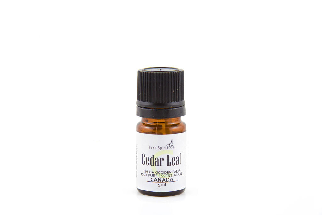 Cedar Leaf Essential Oil
