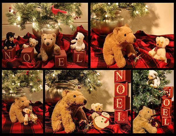 Biff da Bear Holiday Cards - (5 Pack Variety) - SAVE!