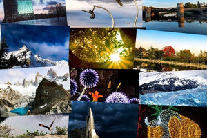 2120 Wall Calendar Cover Photo Collage.