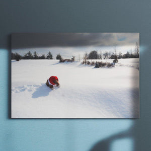 Bear on Snow Bear on Snow Canvas Square - Andrew Moor Photography
