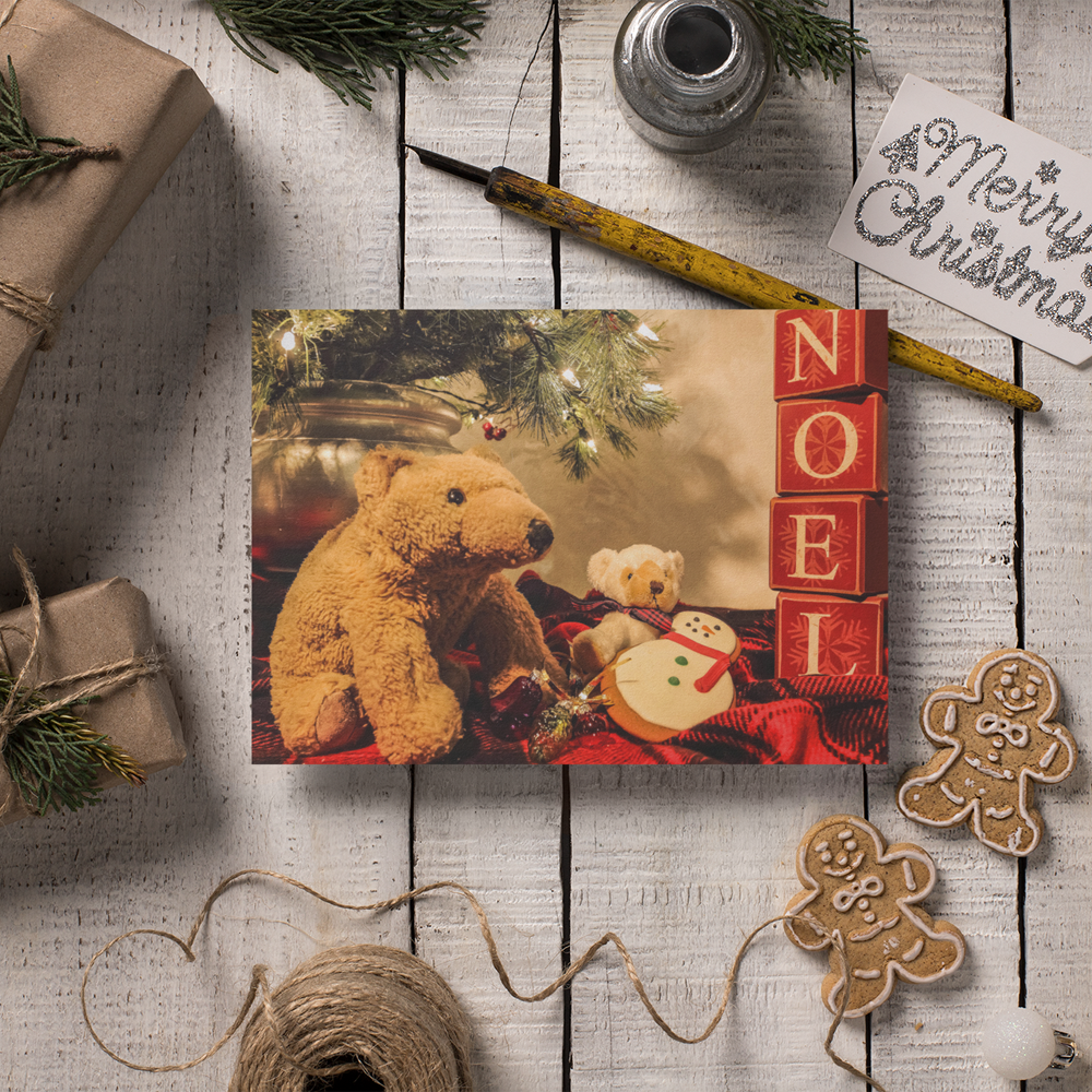 Biff and Barry - Gingerbread Card - Andrew Moor Photography