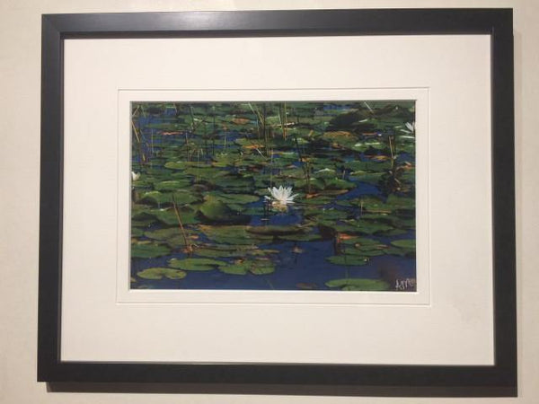 Lily Pond – Signed Photographic Print