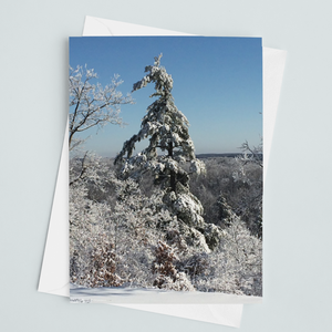 Winter Tree Card - Andrew Moor Photography