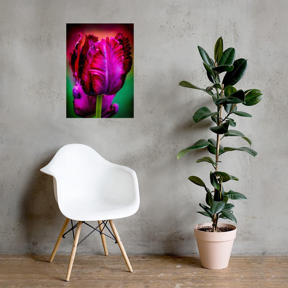 50 x 70cm Purple Tulip Poster - Andrew Moor Photography