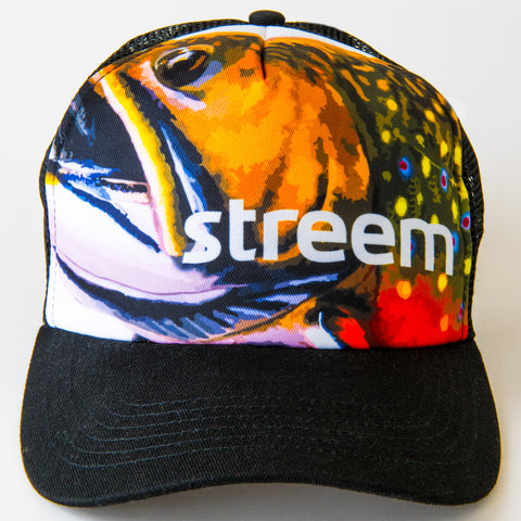 Brook Trucker Hat