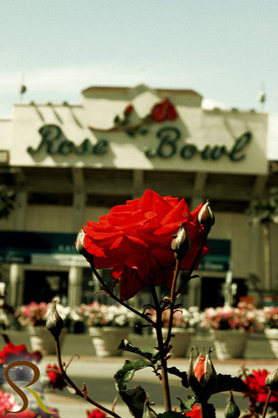 The Rose Bowl -TRBP8