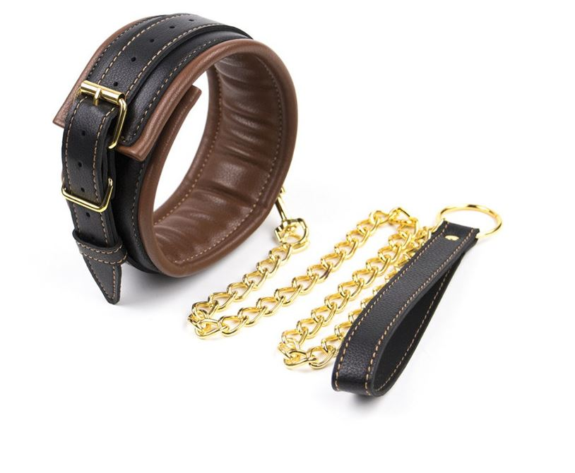 Brown Padded Collar with leash.