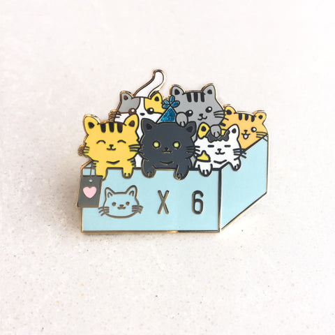 Box of Kittens Pin