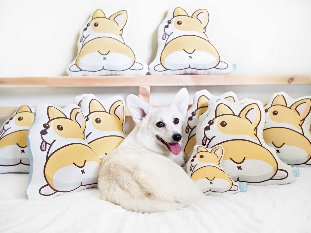 Corgi Butt Pillow